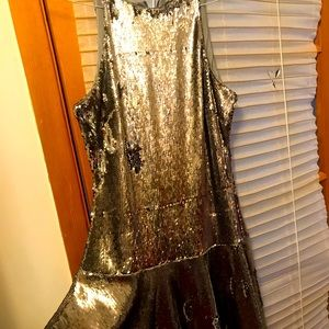 Silver shinny NWOT dress A line flare on bottom